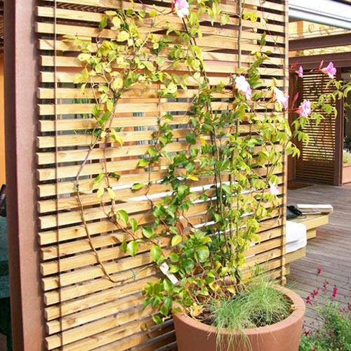 facciata ventilata in legno per esterni depor con pianta rampicante